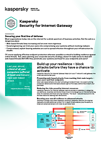 KASPERSKY SECURITY FOR INTERNET GATEWAY - DATABLAD
