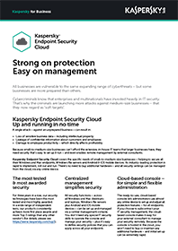 KASPERSKY ENDPOINT SECURITY | SKY-DATABLAD